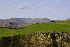 Landschap in Noord-Engeland stock fotografie