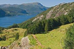 Landschap in Noorwegen Stock Foto