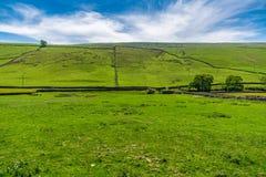 Landschap in North Yorkshire, Engeland, het UK stock foto