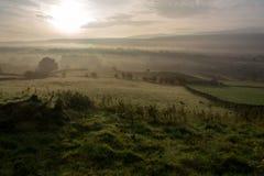 Landschap in ochtendlicht Stock Afbeelding