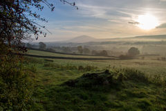Landschap in ochtendlicht Royalty-vrije Stock Afbeeldingen