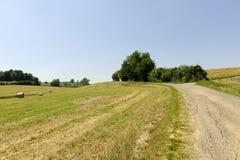 Landschap in Oltrepo Pavese (Italië) stock foto
