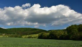 Landschap onder de bergen royalty-vrije stock fotografie