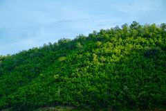 Landschap op berg met hemel Stock Afbeelding