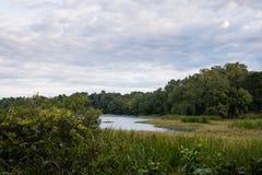 Landschap op Bewolkte Ochtend door Meer en Groene Bomen stock fotografie