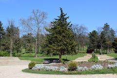 Landschap op borovecjambol royalty-vrije stock foto