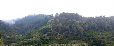 Landschap op de het noordenkust van eilandlapalma royalty-vrije stock afbeeldingen
