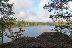 Landschap op een bosmeer Royalty-vrije Stock Foto