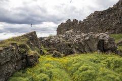 Landschap op IJsland Royalty-vrije Stock Afbeelding