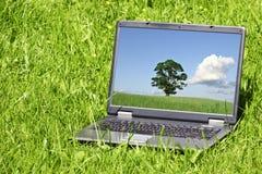 Landschap op laptop het scherm stock afbeelding