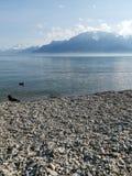 Landschap over meer Genève en de deuken du Midi met een kraai en een eend als middengrond royalty-vrije stock afbeelding