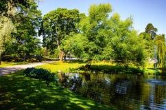 Landschap Park met een vijver en een fontein Stock Foto