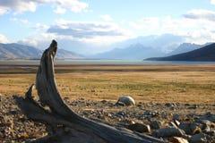 Landschap in Patagonië Stock Foto's