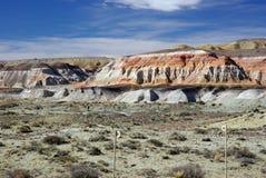 Landschap in Patagonië Royalty-vrije Stock Afbeelding