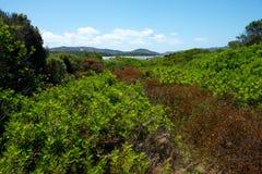 Landschap in platteland royalty-vrije stock fotografie