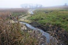 Landschap in recente autumn_2 Stock Fotografie