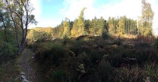 Landschap rond Rogie-Dalingen/Waterval Royalty-vrije Stock Afbeelding