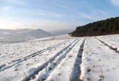 Landschap in sneeuw wordt behandeld die stock foto's