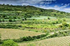 Landschap in Spanje Stock Fotografie