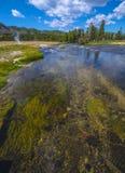 Landschap toneel van een geiserbassin in het Nationale Park van Yellowstone Stock Afbeeldingen