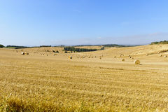 Landschap in Toscanië stock fotografie