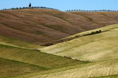 Landschap, Toscanië Val D'Orcia Stock Afbeeldingen