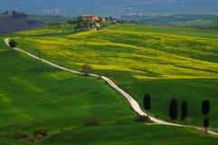 Landschap, Toscanië Val D'Orcia Royalty-vrije Stock Foto