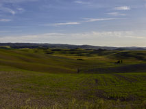 Landschap, Toscanië Val D'Orcia Stock Foto's