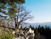 Landschap Tsjechische Brdy, Royalty-vrije Stock Foto's