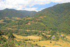 Landschap tussen Thimphu en Gangtey - Bhutan (2) Stock Afbeelding