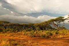 Landschap vóór onweer, Samburu, Kenia Royalty-vrije Stock Foto's
