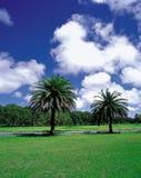 Landschap van Aard stock afbeelding