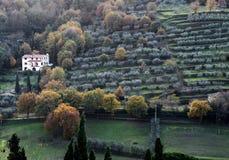 landschap van Arezzo platteland met de traditionele terrasvormige aanleg stock afbeelding