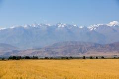 Landschap van bergen bij de herfst Royalty-vrije Stock Afbeelding