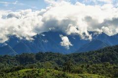 Landschap van bewolkte Ecuatoriaanse het meest cloudforest Royalty-vrije Stock Afbeelding