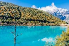 Landschap van Blauwe Maanvallei in Jade Dragon Snow Mountain, Lijiang, Yunnan, China stock afbeeldingen