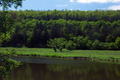 Landschap van bomen, bergen, groene vallei met rivier en hemel Stock Foto