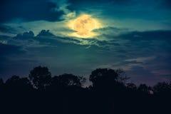 Landschap van bomen tegen nachthemel met volle maan achter wolk Stock Foto