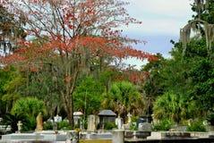Landschap van Bonaventure Cemetery Royalty-vrije Stock Foto's