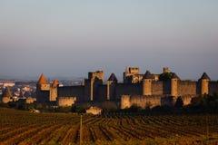 Landschap van borstweringtorens die van wijngaarden toenemen Stock Foto