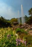 Landschap van botanische tuin stock foto