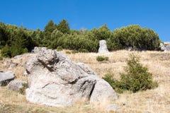 Landschap van Bucegi-Bergen Stock Afbeelding