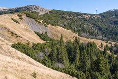 Landschap van Bucegi-Bergen Stock Fotografie