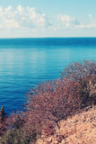 Landschap van Calabrië Stock Afbeelding