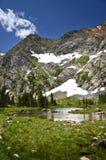 Landschap van Colorado Royalty-vrije Stock Fotografie