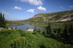 Landschap van Colorado Stock Afbeelding
