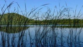Landschap van Connecterra Stock Afbeeldingen