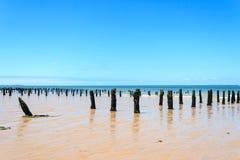 Landschap van de Atlantische kust van een Frans eiland Stock Foto