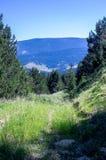 Landschap van de bergen die van de Pyreneeën uit het in de schaduw gestelde bos komen Royalty-vrije Stock Fotografie