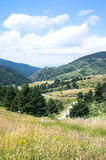 Landschap van de bergen van de Pyreneeën Stock Foto